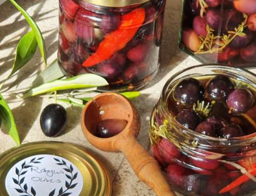 It's time to harvest your olives!